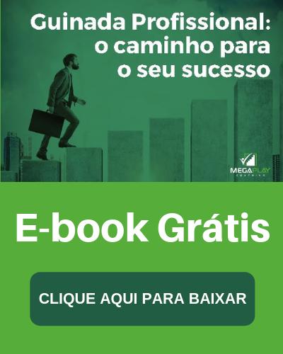E-book: Guinada Profissional - o caminho para o sucesso